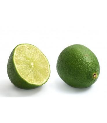 لیمو ترش شیرازی